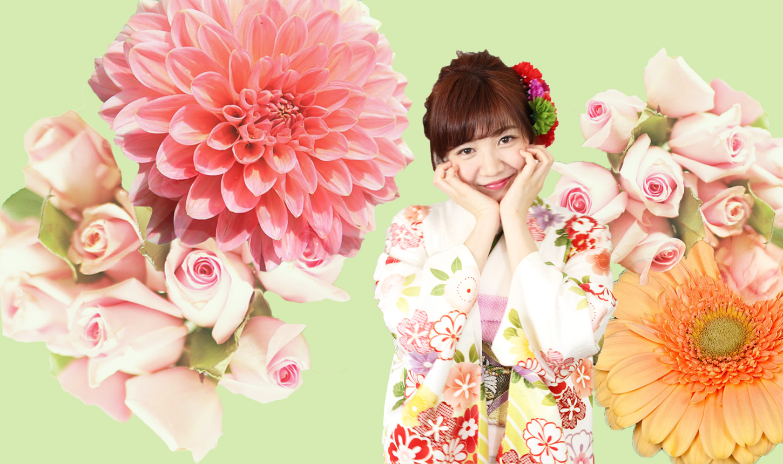 奈良生駒 振袖 着物 成人式 帯ときもの やまぐち